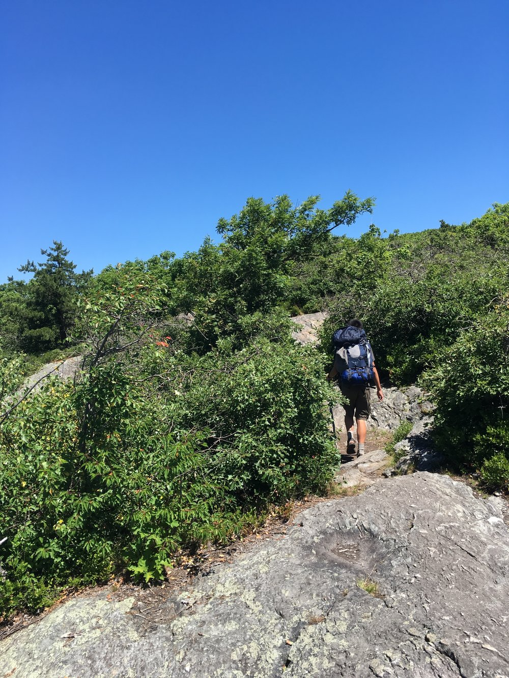 Hiking along the Appalachian Trail to Bear Mountain, the highest point in CT.