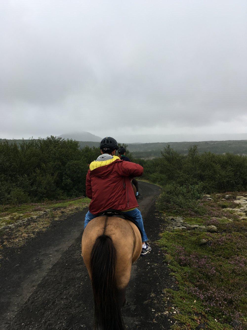 Horsebacking riding outside of Reykjavik, Iceland over a volcanic beach.