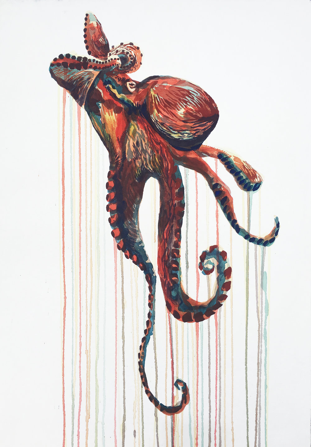 Kai_Kaulukukui_Red_Octopus.jpg