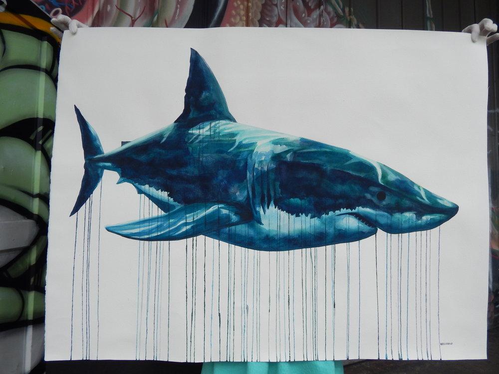 """Megalodon""  36x48 Watercolor $2000"