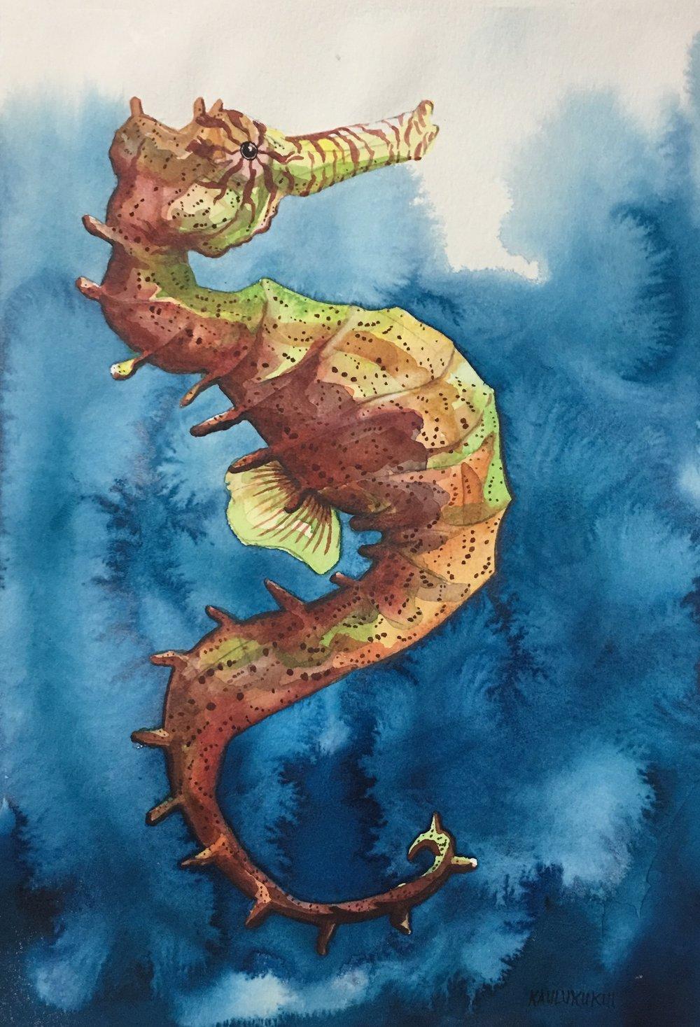 """""""Tweaked Seahorse""""  15x11 Watercolor $160"""