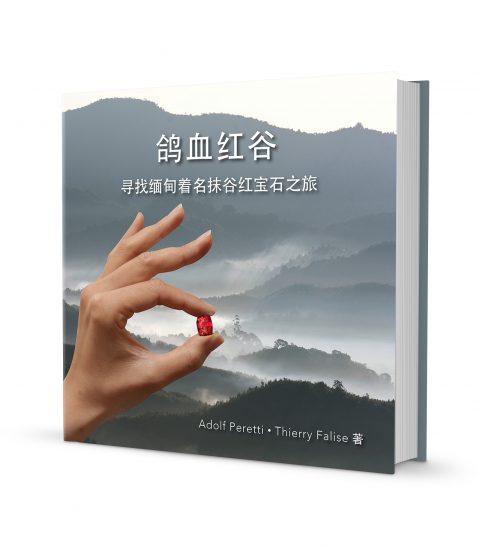 Mogok-ch-Book-480x549-2.jpg