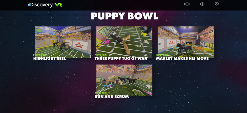 Click here for a 360° Puppy Bowl video that can be played on your browser.