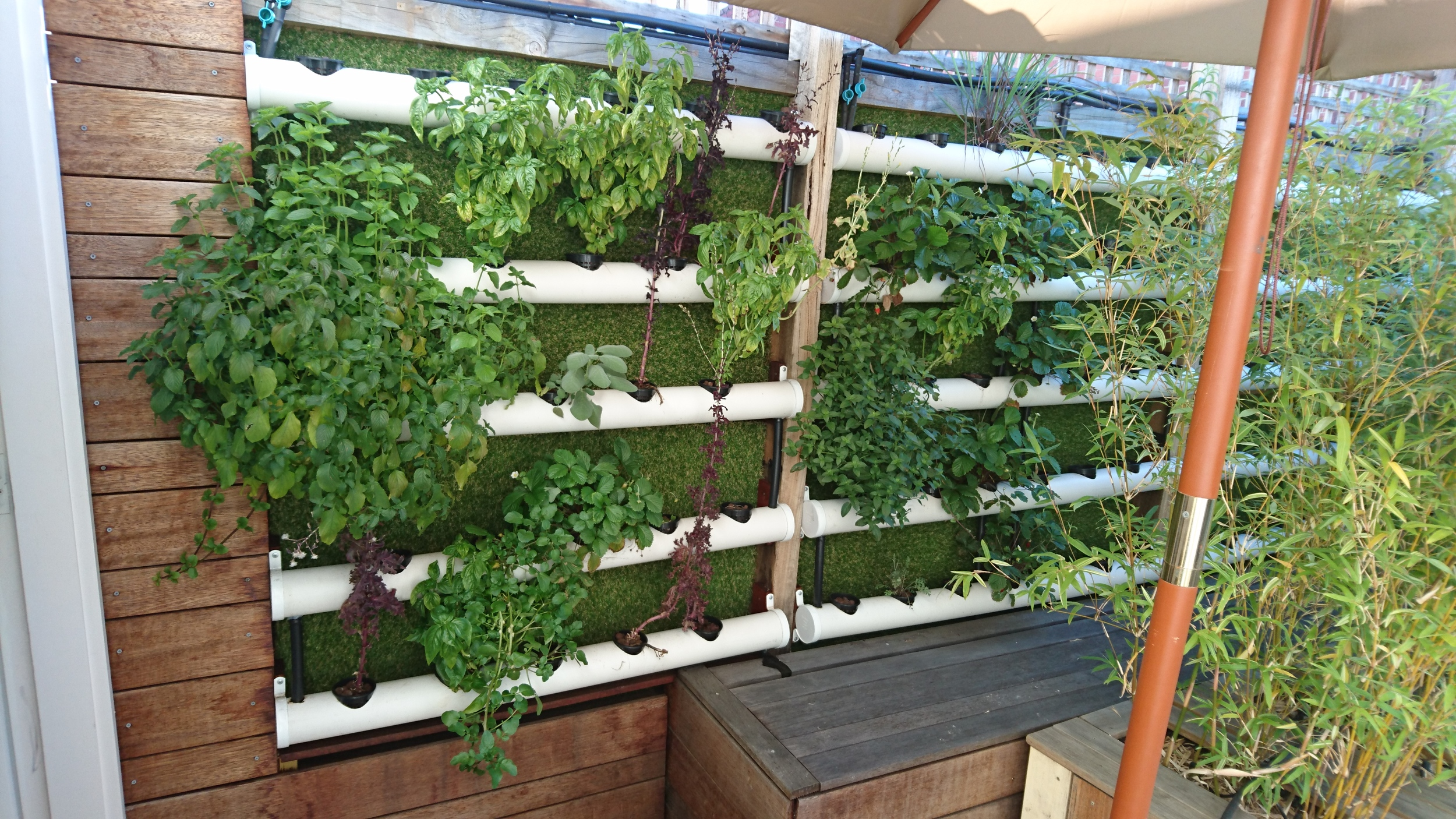 Build Your Own Home Aquaponics Vertical Garden