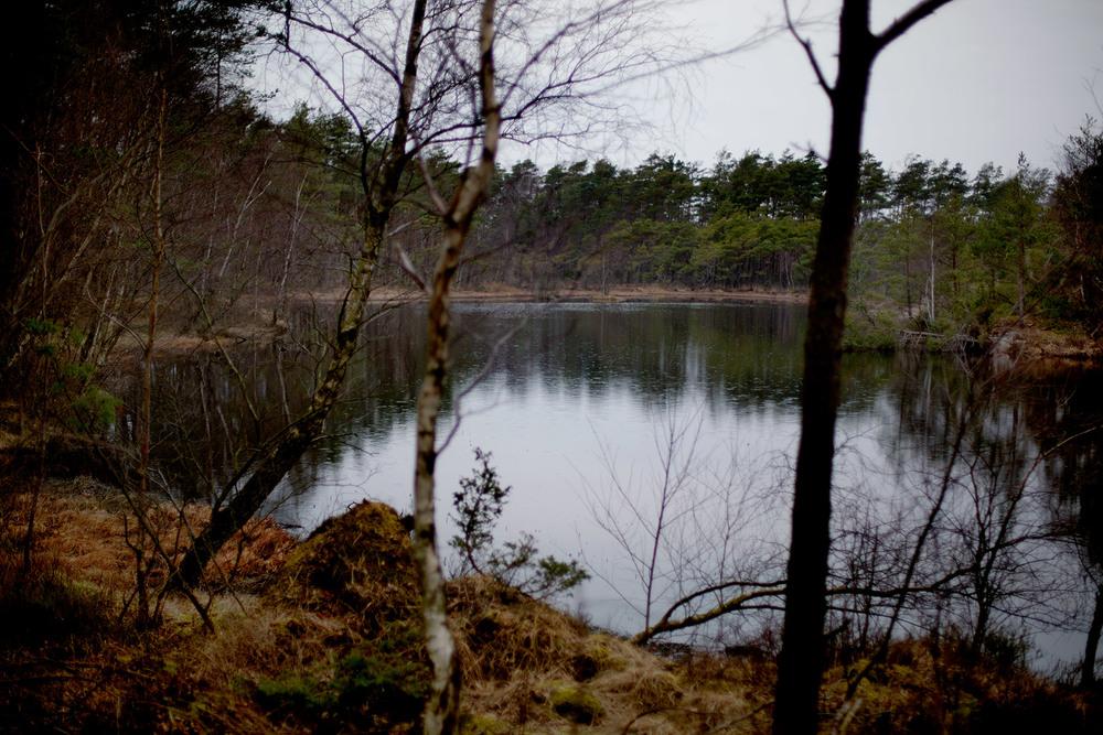 blogg-160403vindskyddet2.jpg