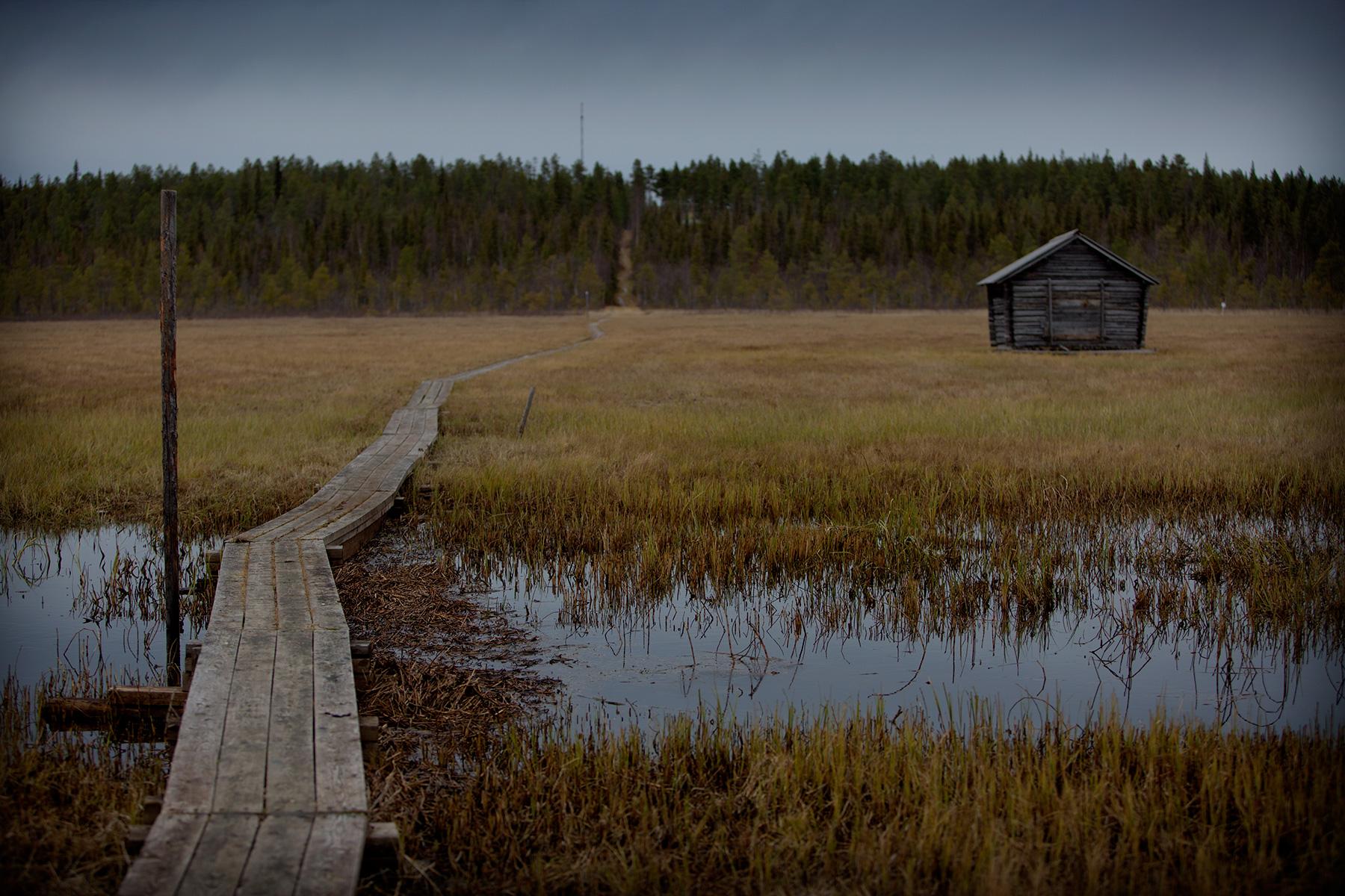 blogg-151015mikaelniemi9