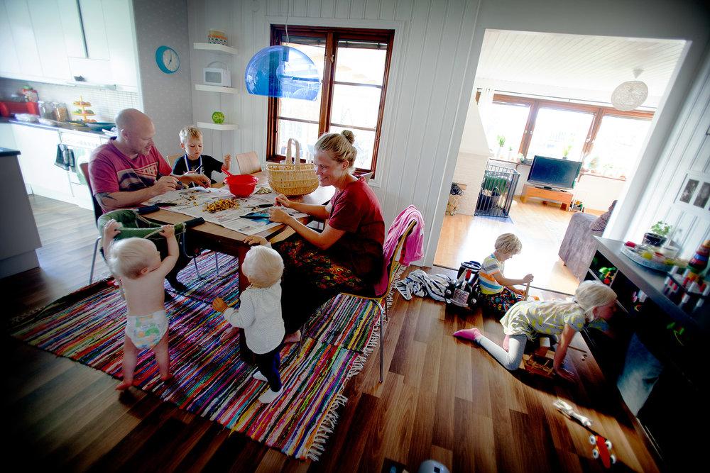 blogg-150706svampskogstella12.jpg