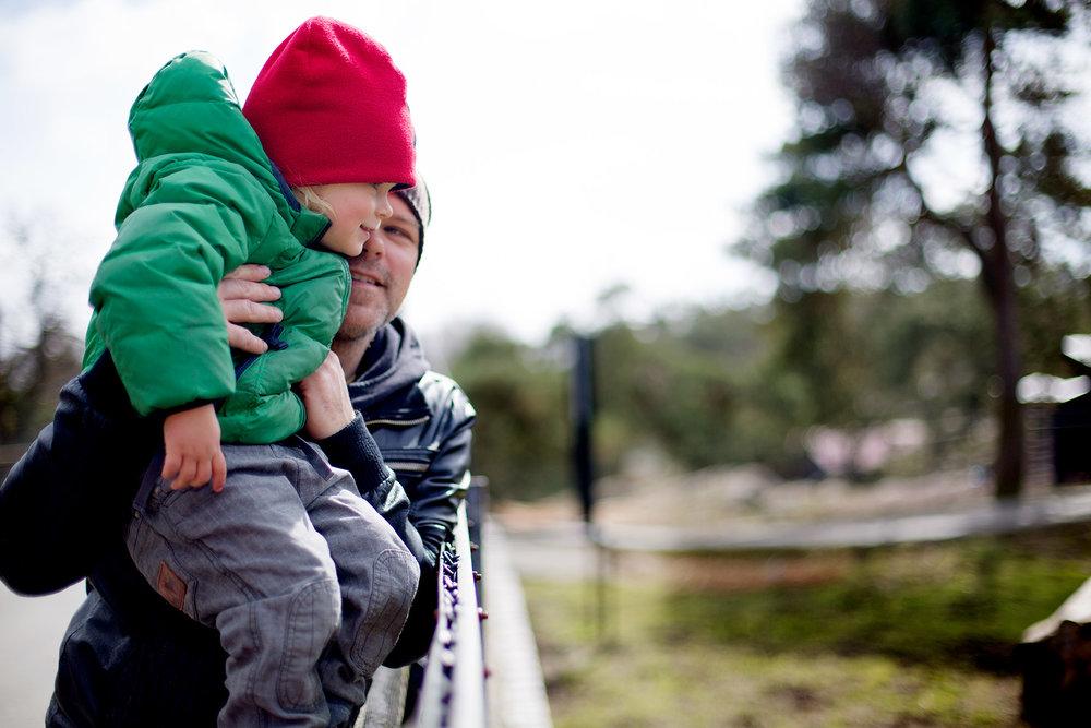 blogg-170412slottsskogen12.jpg