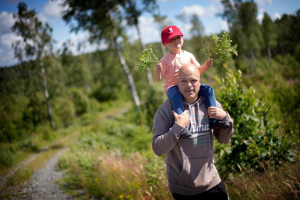 blogg-170703blabarsskogen6.jpg