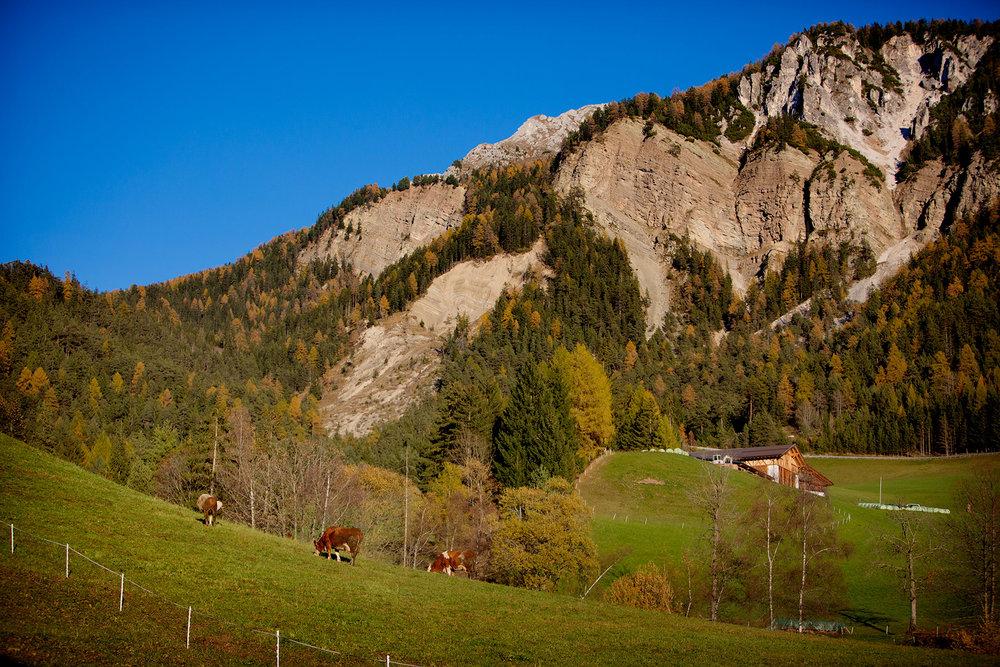 blogg-171026fallerhof13.jpg