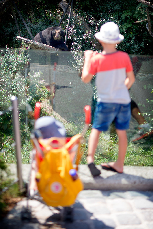 blogg-180803tiergarten22.jpg
