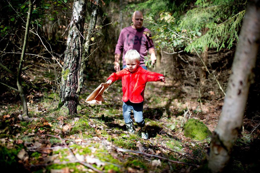 blogg-180826ambjorntorpskogen5.jpg