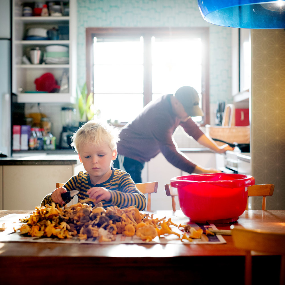 blogg-180930svampskog9.jpg