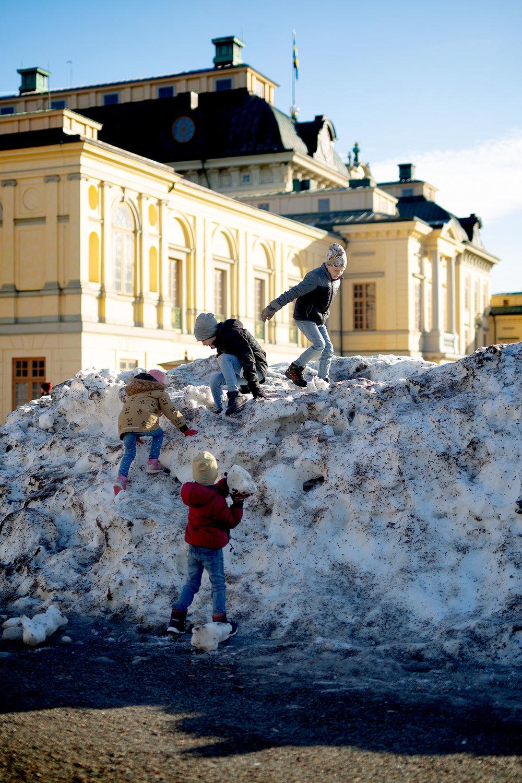 blogg-190217drottningholm3.jpg
