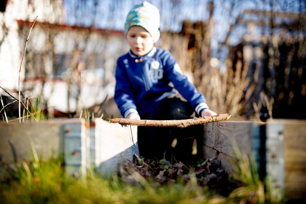 blogg-190329rensaograsbertil9.jpg