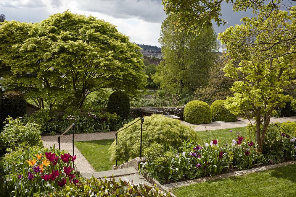 Bath garden April'17_0436.jpg