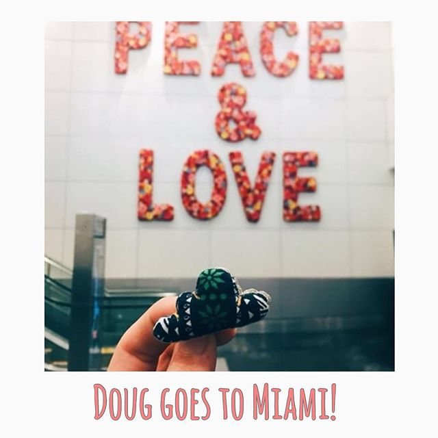Doug goes to Miami! Thank you @wildchildonthemove for sharing this wonderful picture at the Miami International Airport and supporting the cause.  To know more and buy Doug online go to www.onceuponadoug.com