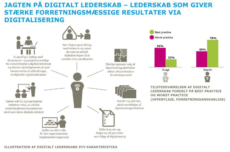 Kilde: It i Prakis 2015 Dansk IT og Rambøll
