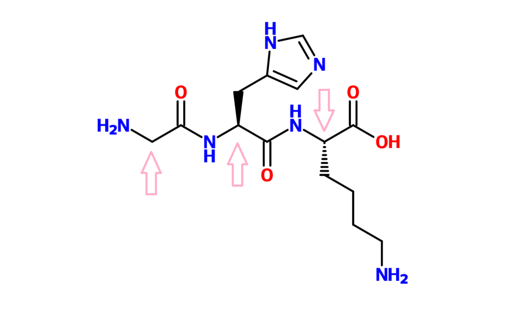 Figure 14. GHK (Glycine-Histamine-Lysine)-Cu. The arrows indicate the central C of each amino acid.