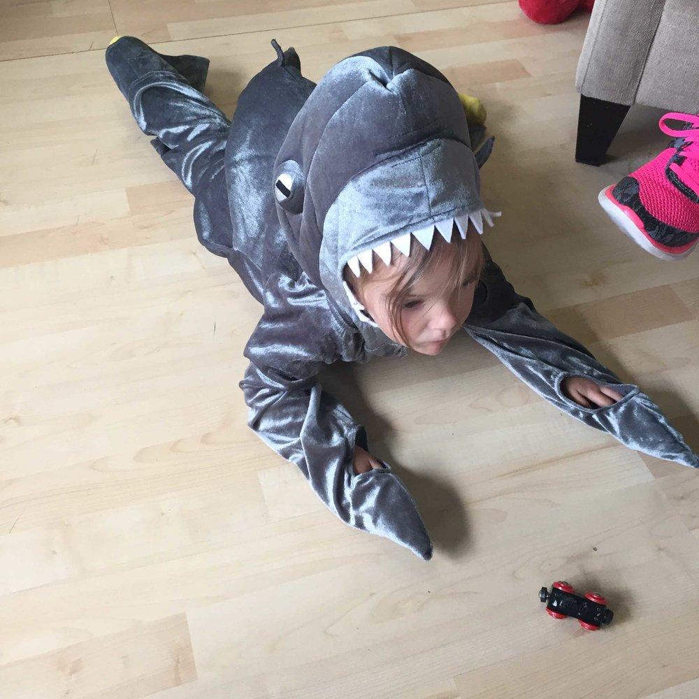 shark-costume-sm.jpg