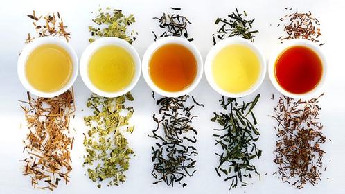 Tea Tasting with Zhi Tea