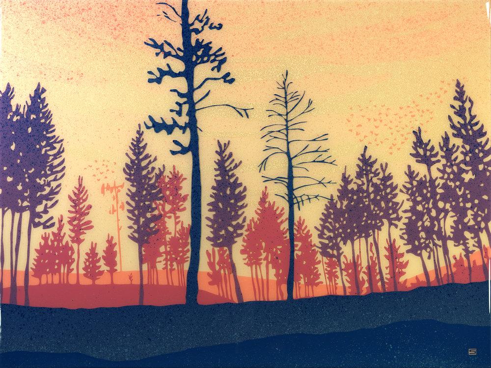 Radium Lodge Pines
