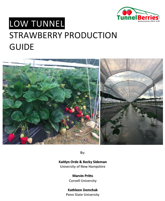 TunnelBerries Low Tunnel Guide