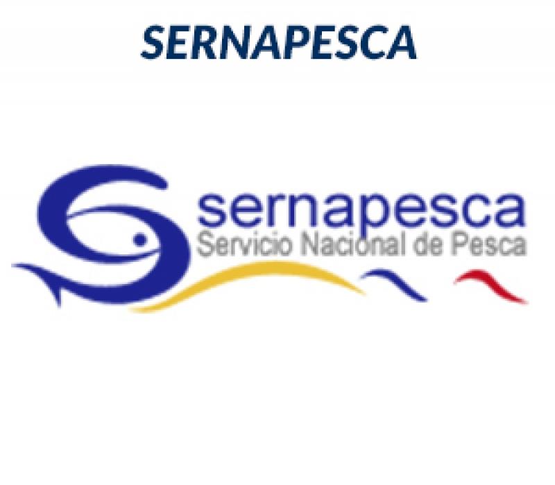 SERNAPESCA-m34x54nzqwqt3z115xsp9qcyxiv7rusd44k3qttkrc.jpg