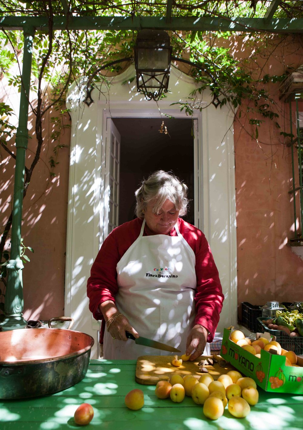 Jeannie leading cookery course, Buenvino b&b southern Spain