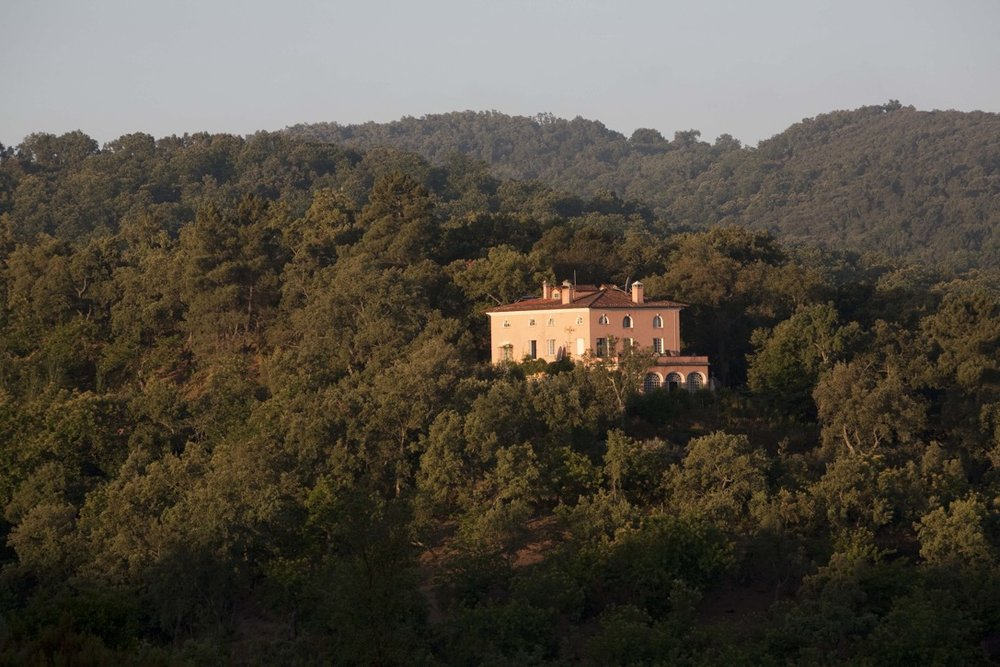 The house seems to float above the forest, and on all sides looks out over the tops of the chestnut and cork trees.