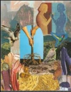 donna collage.JPG