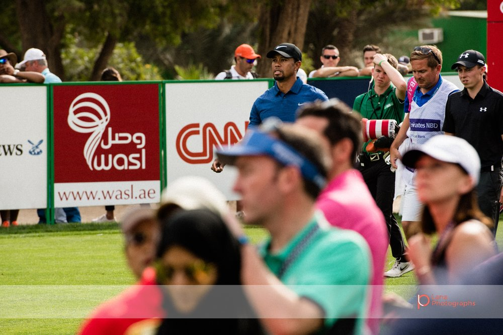 A visibly disappointed  Tiger Woods  stands with his hands on his hips as he swings and misses during the Omega Dubai Desert Classic.