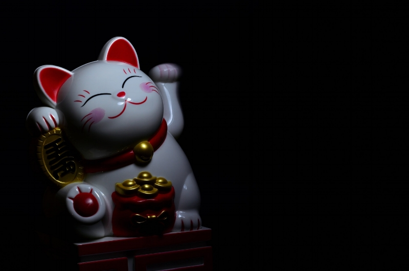art-cat-celebration-932263.jpg