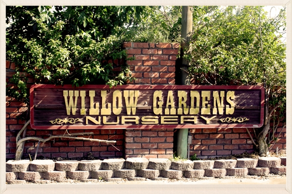 willow gardens nursery serves Fresno and Clovis for all your gardening and landscaping needs