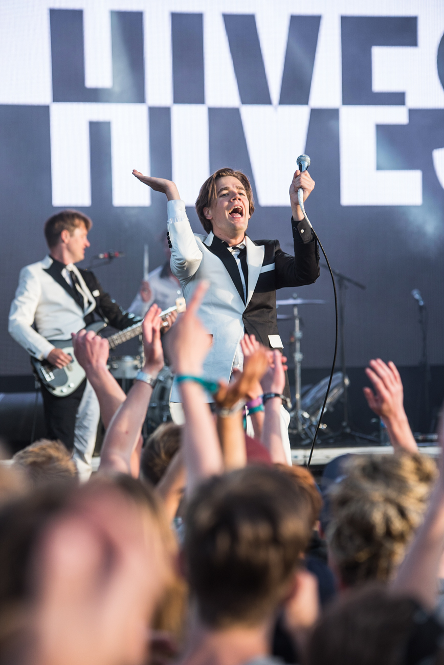 TheHives-14.jpg