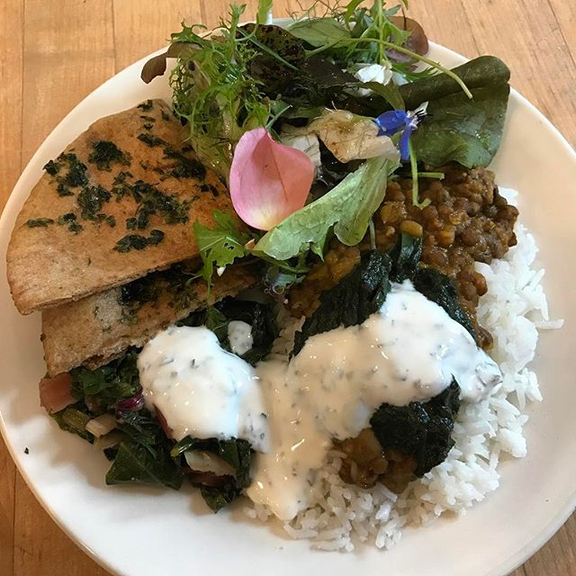 "Oh how I love cooking at the OAEC! Today's lunch :: basmati rice with lentil & mung bean daal, Swiss chard, nettle chutney, mint yogurt, society garlic and parsley ""naan"" and the amazing mother garden salad with a citrus-Tamara dressing! #lunch #lunchideas #indian #garden #homegrown #herbs #farmtotable #eatlocal #highvibes #homemade #withlove #sonoma #permaculture #mischacooks"