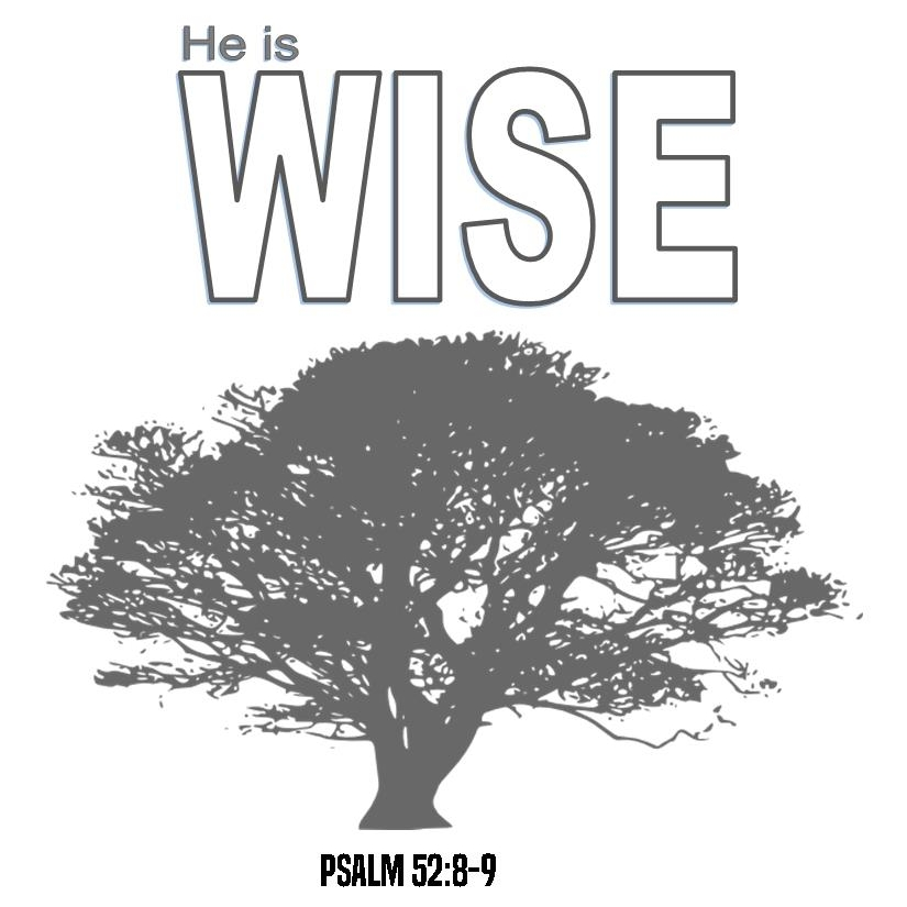 Wise - Week 3 in a study on the Character of God. He is wise; His ways are above our ways.Click Here for Study Guide >>