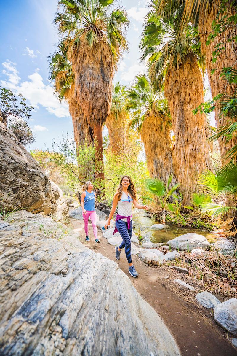 Andreas Canyon, Indian Canyons, Palm Springs, California