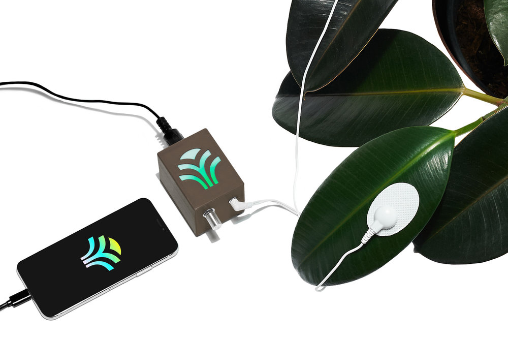 Bioplastic_Midi-Sprout_Connected_To_iPhone_Final_Brown.jpg