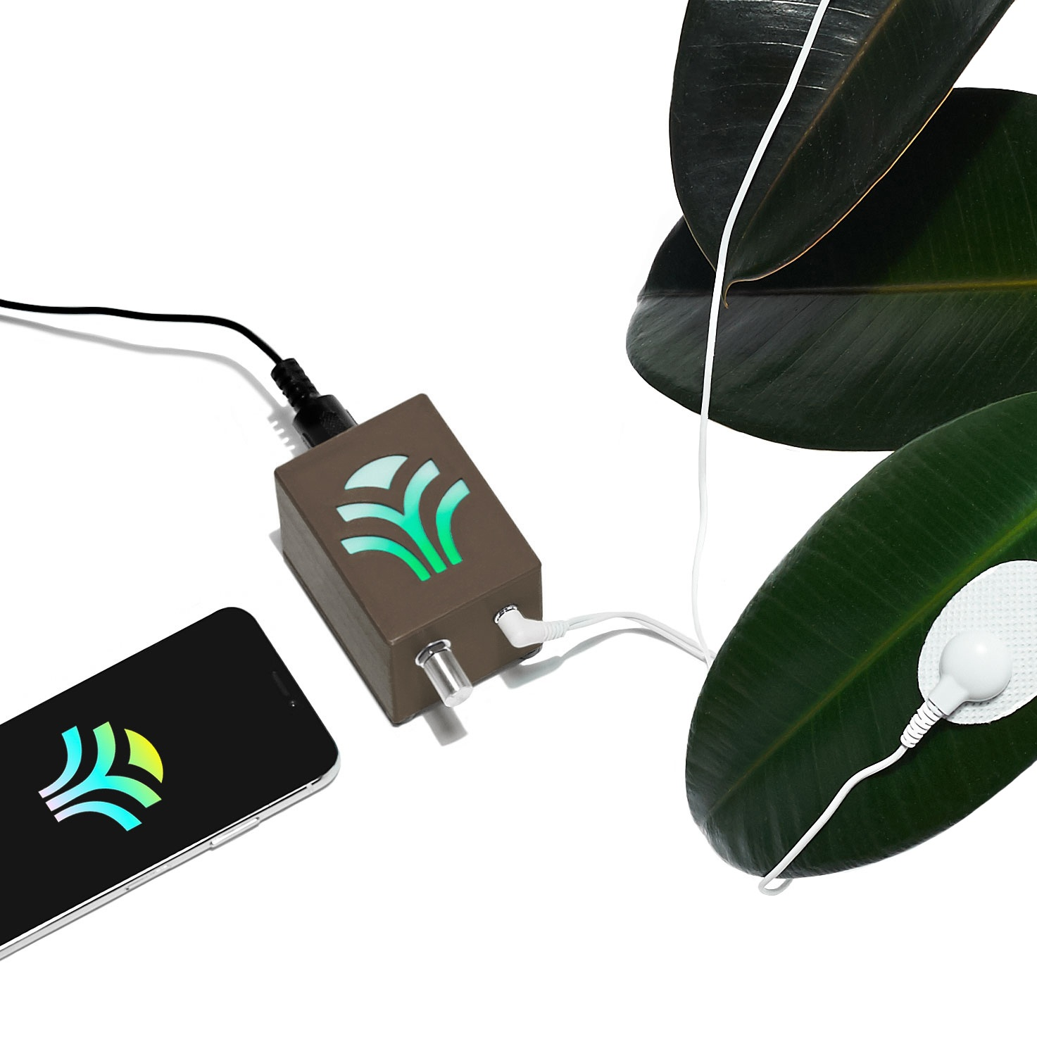 MIDI Sprout for iPhone Bundle — MIDI Sprout
