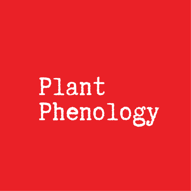 phenology.png