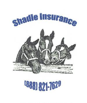 Shadle Insurance-page-001.jpg