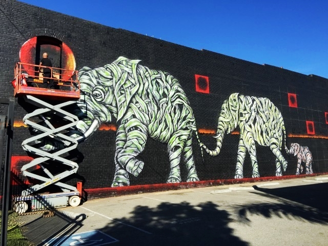 Mural: Otto Schade / Photo: Cindy Schwarzstein (Cartwheel Art)