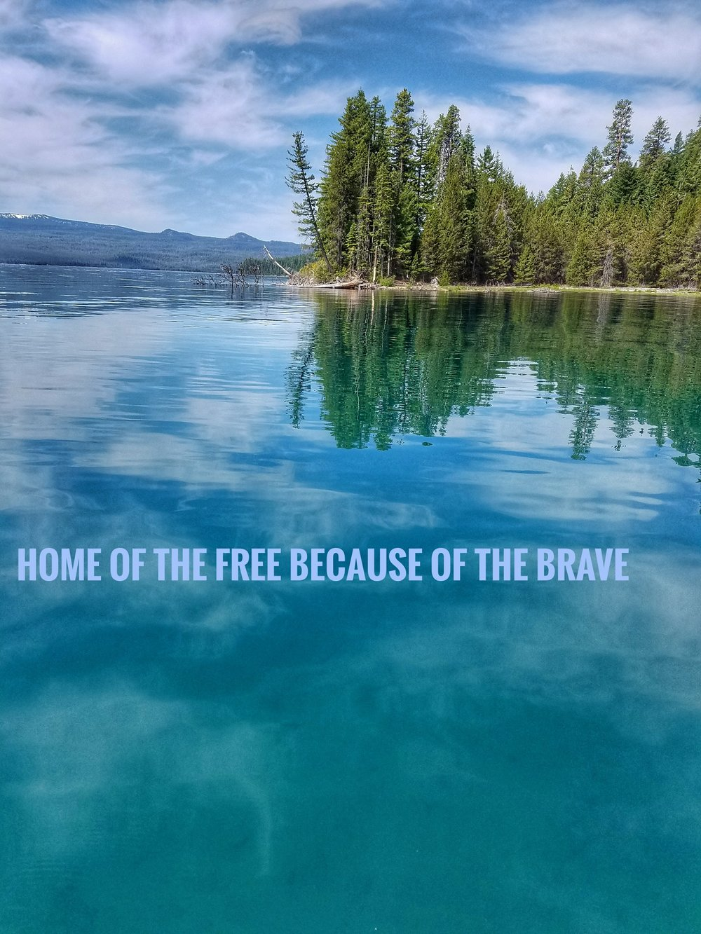 home of the free.jpeg