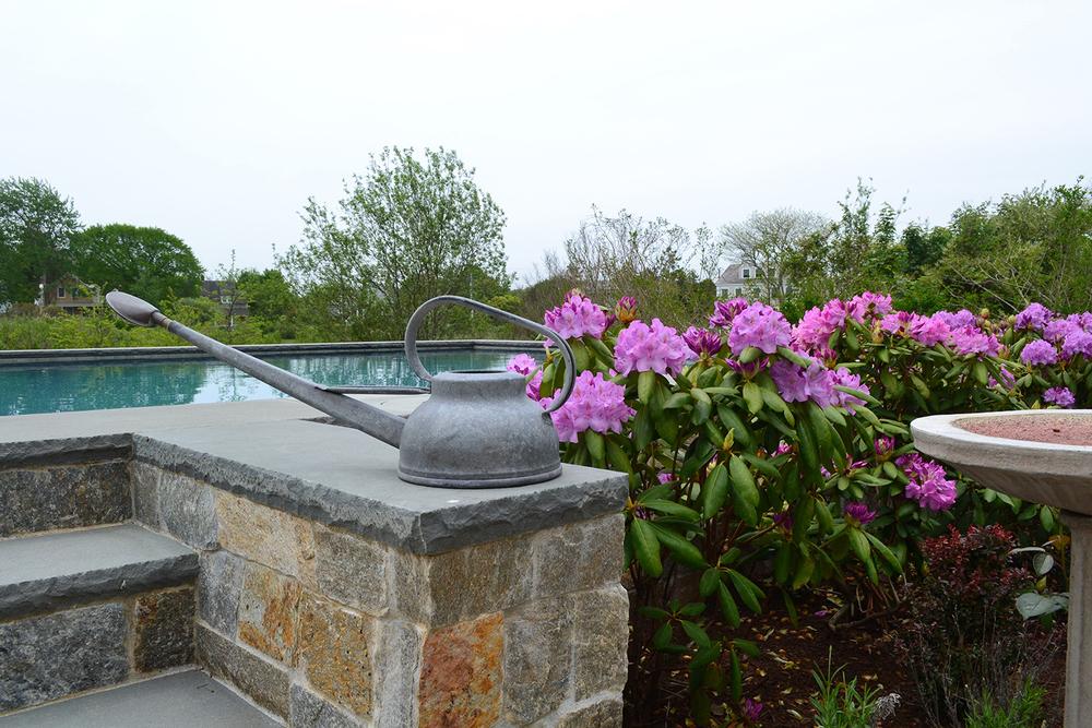 New.Pool.DSC_0786.jpg