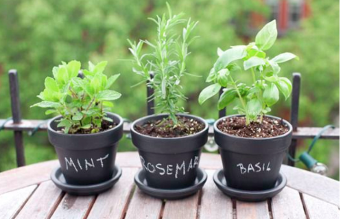 There are so many great products on the market for exterior use. A popular item over the last couple of years has been chalk paint. This makes for a fun way to customize what you have in your yard to a specific gathering without having to buy new decor items each time. For example, you can paint your planters and label your herbs, or you can use that same planter to hold knives and forks for an outdoor dinner party.