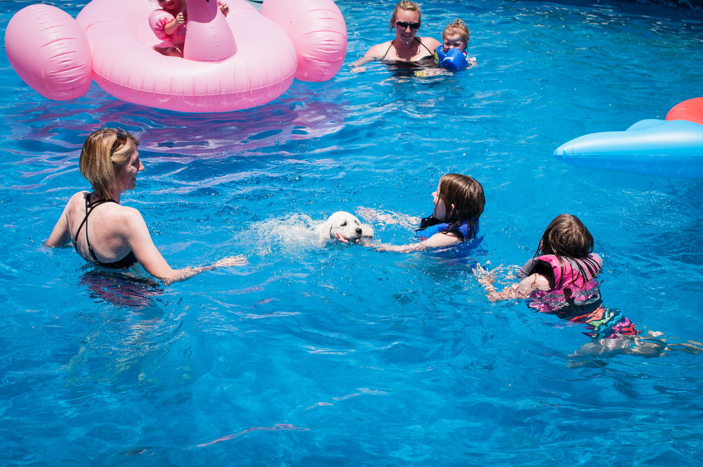 Above Ground Pool Accessories -