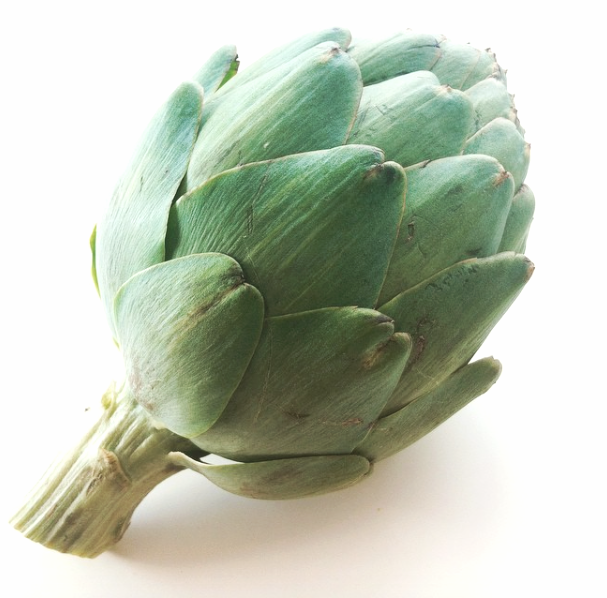 Did you know  Globe Artichokes  are a member of the thistle family!? Artichokes have two special types of phytonutrients called   Cyanrin and  Silymarin ,which help to support the liver through detoxification, regeneration of new cells, and increasing bile flow. This in turn helps to support gallbladder health and better digestion since bile stimulates peristalsis (the wave-like motion of the intestines) to help get things moving!     Try Artichokes In:     - Mediterranean quinoa salad with artichokes, asparagus, parsley,and sundried tomatoes    - Brown rice chicken & artichoke pasta    - Creamy potato & artichoke soup    - Simple steamed tender artichoke leaves dipped in grass-fed garlic butter