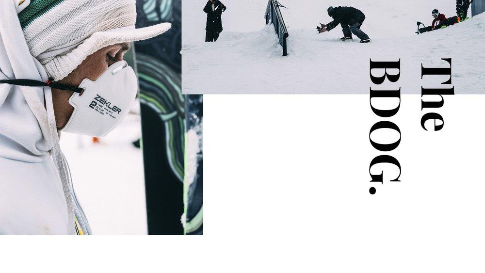 BDog_Collage_3-min (1).jpg