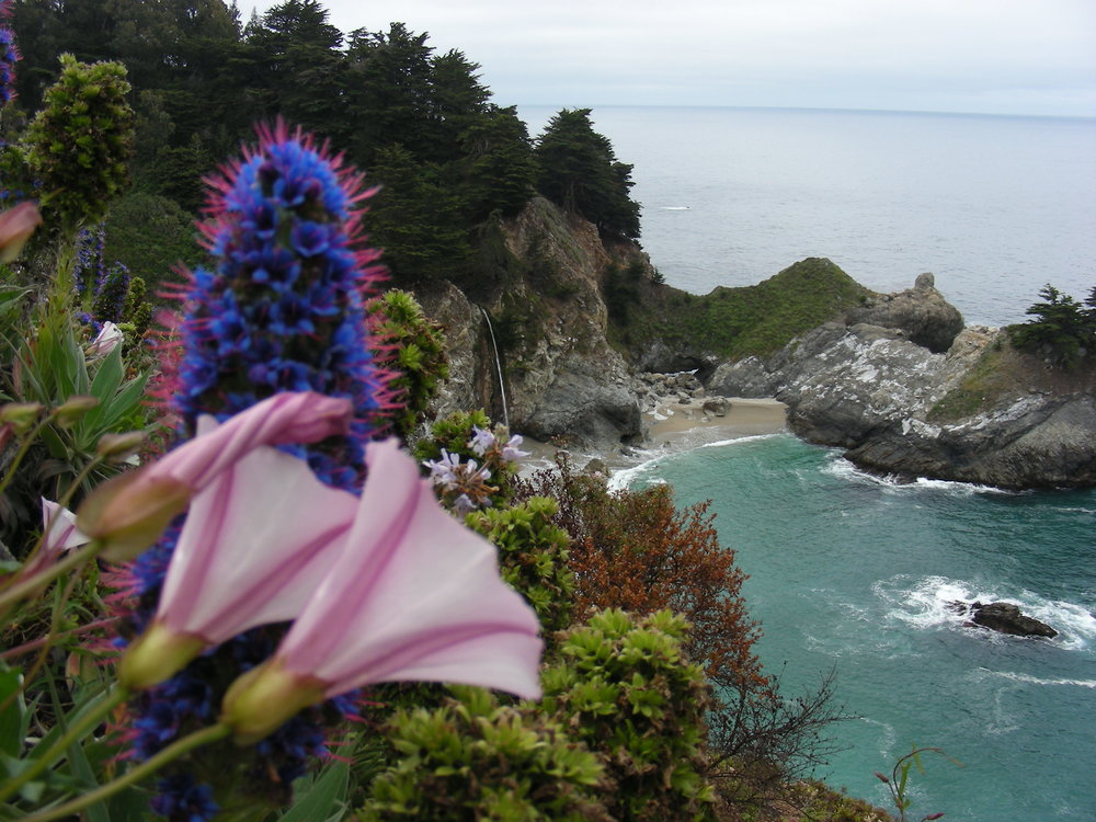 McWay Falls within Julia Pfeiffer Burns State Park